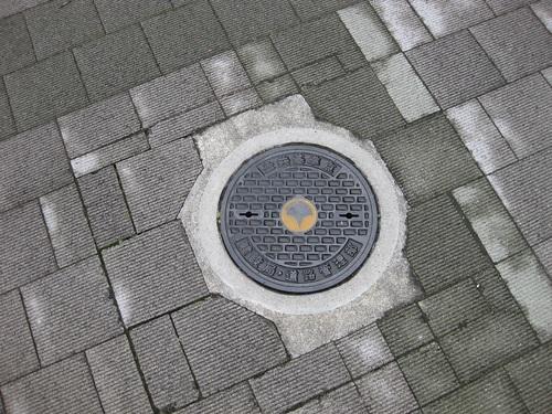 20030503.JPG