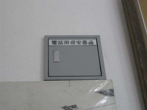 20050214.JPG