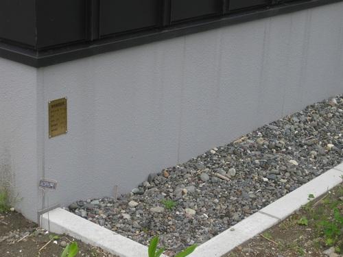 20090205.JPG
