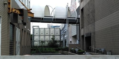 20102502.JPG