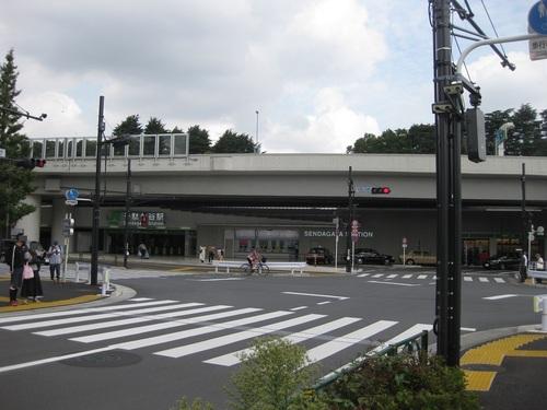 20102601.JPG