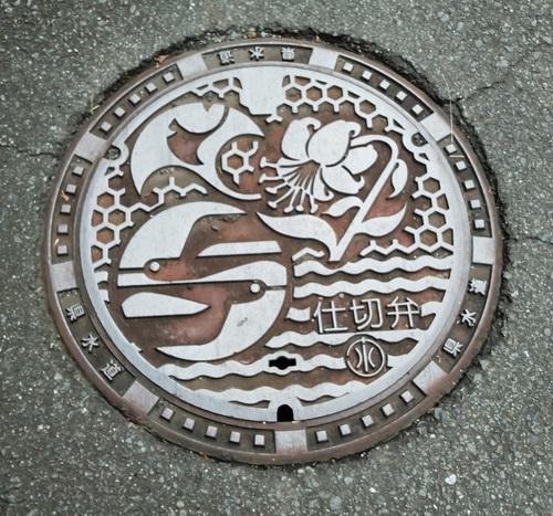 20112406.JPG