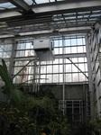 温室の暖房.JPG
