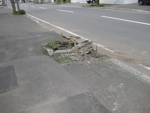 typh21gunyrfugi4.JPG